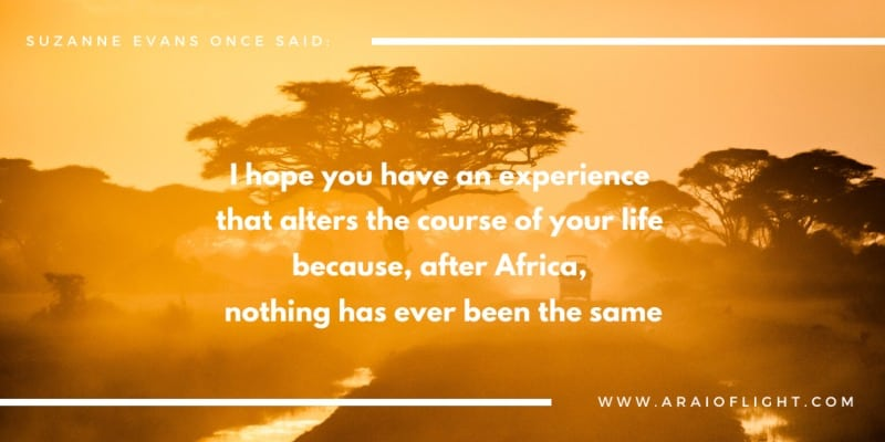 African Proverbs Quotes Life