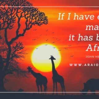 African Quotes in Africa Life Love