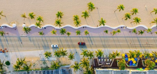 drone beach palm trees instagram caption