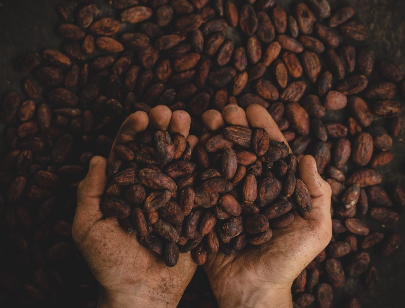 Coffee beans vietnam souvenirs gifts buy