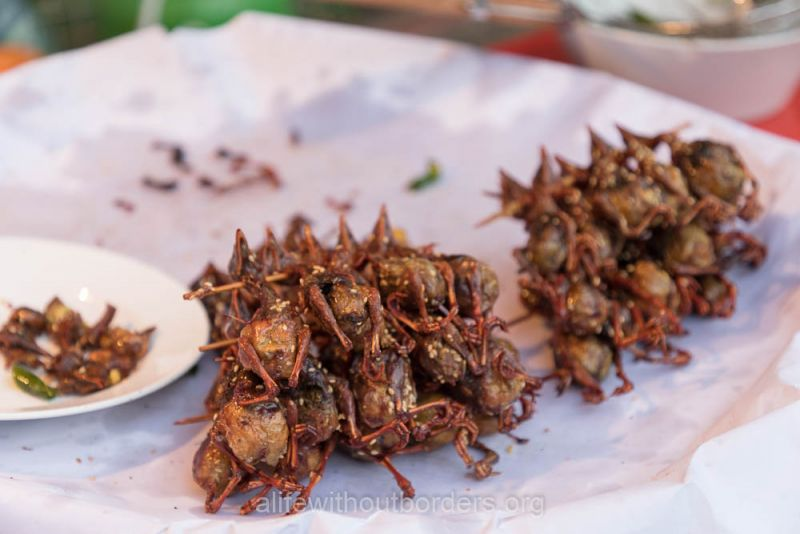 Eating Sour swallows Laos unusual food