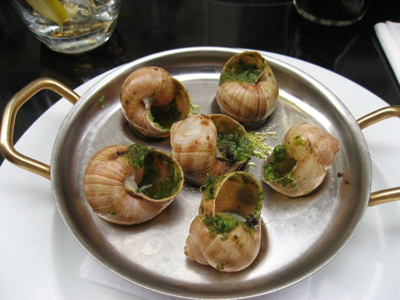 Eating gourmet snails Paris strange food